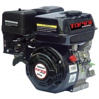 Picture of PETROL ENGINE TORINI 6.5 HP